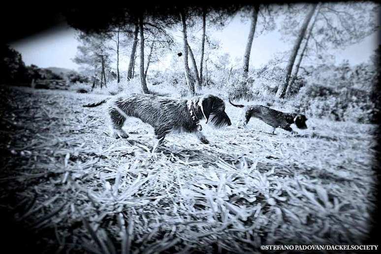 hunters-2